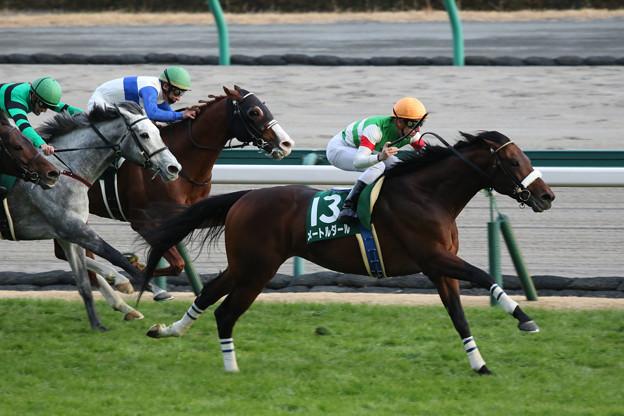 メートルダール レース(17/12/09・第53回 中日新聞杯)