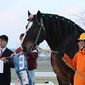 写真: ゴールデンフジ 口取り_1(18/01/21・6R)