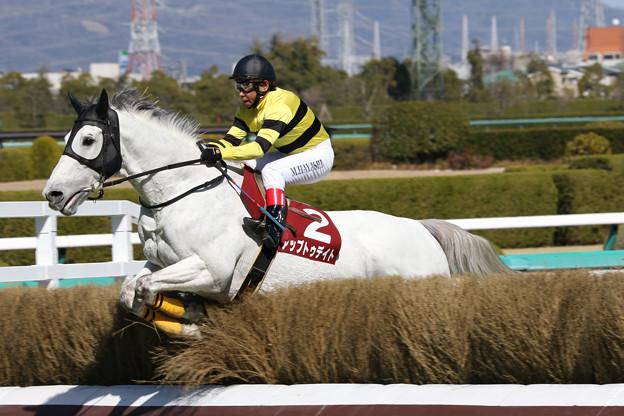 アップトゥデイト レース_1(18/03/10・第20回 阪神スプリングジャンプ)