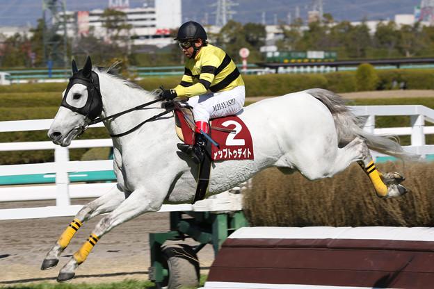 アップトゥデイト レース_3(18/03/10・第20回 阪神スプリングジャンプ)
