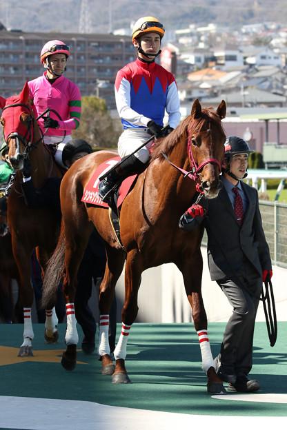シンキングダンサー(18/03/10・第20回 阪神スプリングジャンプ)