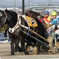ジーワンキング レース_1(18/03/03・6R)