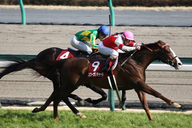 スワーヴリチャード レース(18/03/11・第54回 金鯱賞)