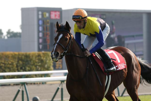 デニムアンドルビー 返し馬(18/03/11・第54回 金鯱賞)