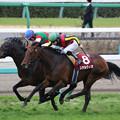 第67回 フジテレビ賞スプリングステークス(18/03/18)