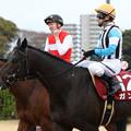 ガンコ レース後(18/03/24・第66回 日経賞)