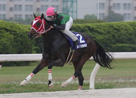 サムライドライブ レース(18/05/02・第57回 駿蹄賞)