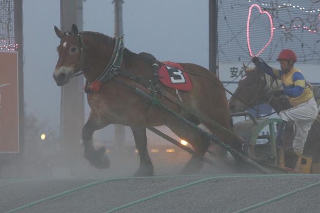 サカノチサト レース(18/04/29・7R)