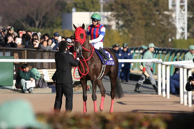 ノンコノユメ_1(18/02/18・第35回 フェブラリーステークス)