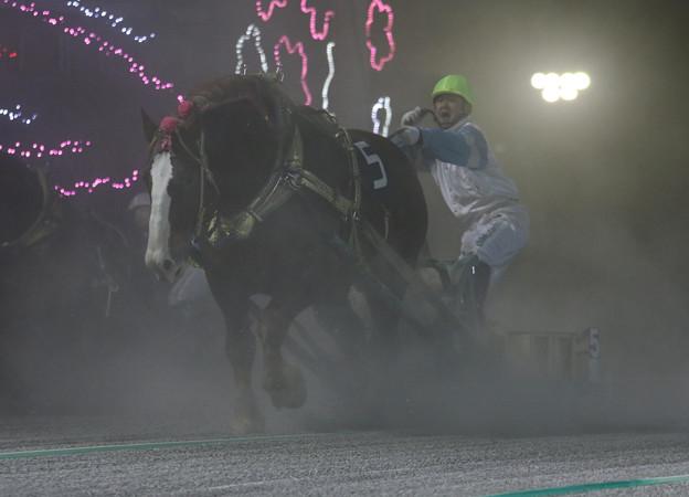 コウシュハウンカイ レース(18/04/29・第12回 ばんえい十勝オッズパーク杯)