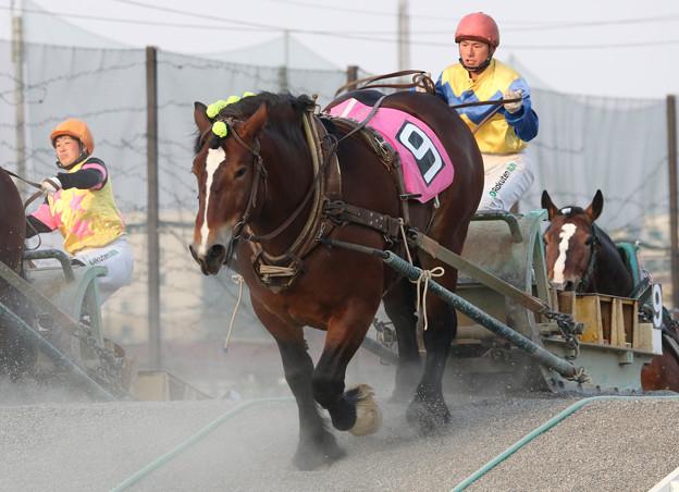 オレワチャンス レース(18/04/29・5R)