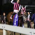 写真: マイタイザン_1(18/05/04・第54回 兵庫大賞典)
