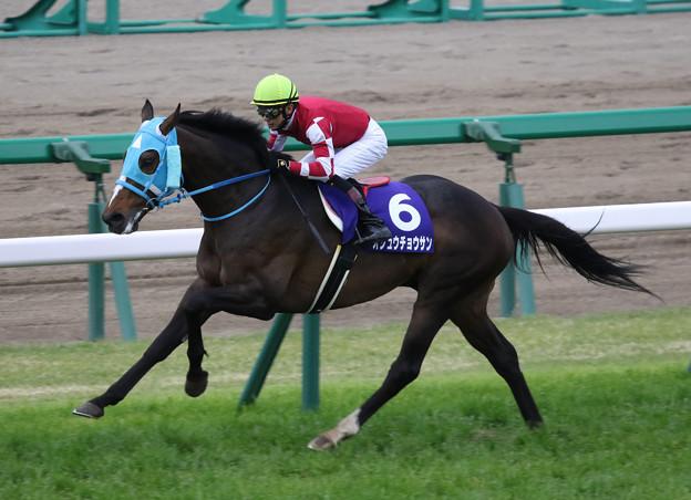オジュウチョウサン レース_2(18/04/14・第20回 中山グランドジャンプ)