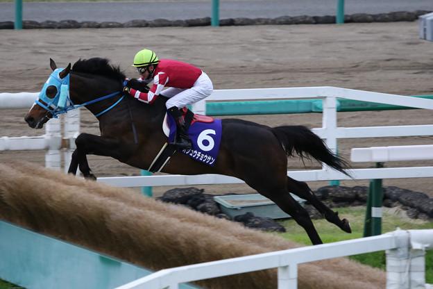 オジュウチョウサン レース(18/04/14・第20回 中山グランドジャンプ)