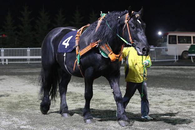 オレノココロ パドック(18/04/29・第12回 ばんえい十勝オッズパーク杯)