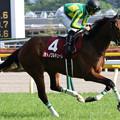 サトノワルキューレ 返し馬(18/04/22・第53回 サンケイスポーツ賞フローラステークス)