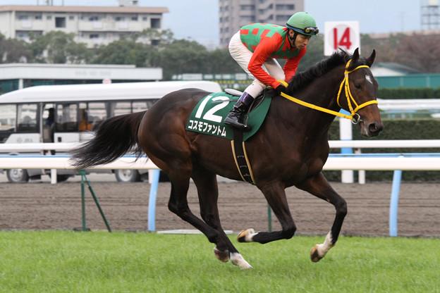 コスモファントム 返し馬(11/12/10・第47回 中日新聞杯)