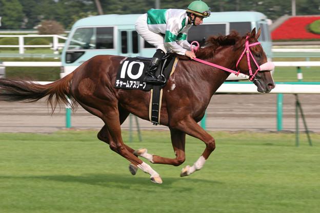 チャームアスリープ 返し馬(06/09/09・紫苑ステークス)
