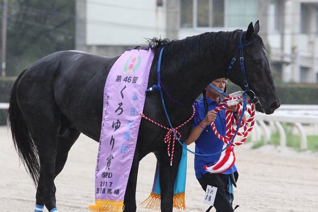 ヴェリイブライト(17/08/15・第46回 くろゆり賞)