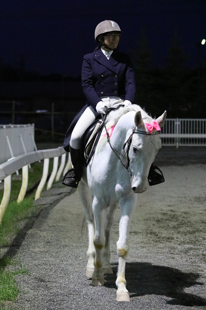 誘導馬 プリンス_1(18/06/17・第49回 旭川記念)