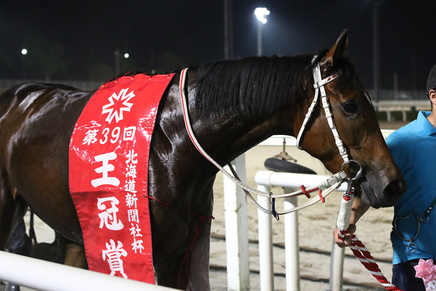 クロスウィンド(18/07/26・北海道新聞社杯 第39回 王冠賞)