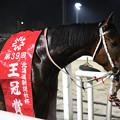 写真: クロスウィンド(18/07/26・北海道新聞社杯 第39回 王冠賞)