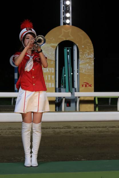 大井競馬場 ゴール板(18/08/15・第52回 黒潮盃)