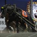 写真: ゴールデンフウジン レース(18/06/17・9R)