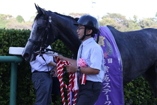 ノームコア_2(18/09/08・第3回 紫苑ステークス)