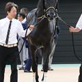 ジェネラーレウーノ_1(18/09/17・第72回 朝日杯セントライト記念)