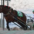 Photos: サクラニシキヒメ レース(18/06/16・8R)