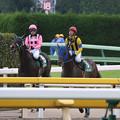 イーグルフェザー レース後(18/11/10・第23回 東京中日スポーツ杯武蔵野ステークス)