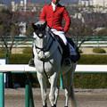 阪神競馬場 誘導馬・シルバーロマンス_4(18/03/10)