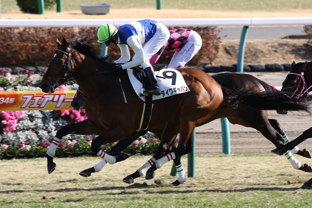 ダイワギャバン レース(18/01/07・新馬戦)