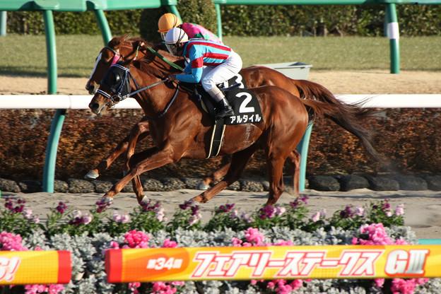 アルタイル レース(18/01/07・ポルックスステークス)