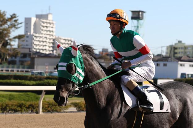 プラネットエー 馬場入場(18/11/23・新馬戦)