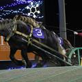 ギンノダイマオー レース(18/12/02・第37回 十勝産駒特別)
