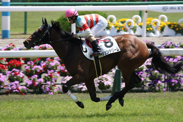 ジュンドリーム レース(18/05/05・6R)