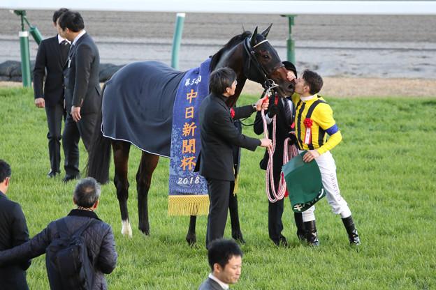 ギベオン(18/12/08・第54回 中日新聞杯)