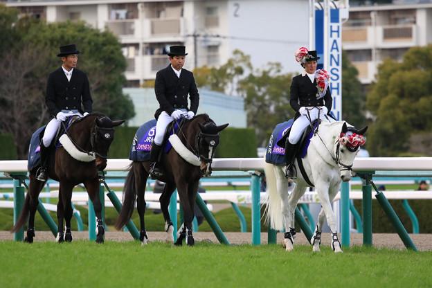 第70回 阪神ジュベナイルフィリーズ 誘導馬_1(18/12/09)