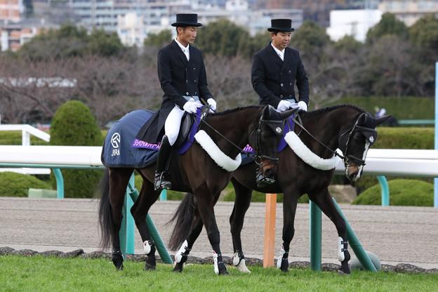 第70回 阪神ジュベナイルフィリーズ 誘導馬_2(18/12/09)