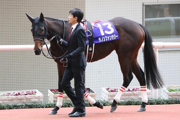 ダノンファンタジー パドック(18/12/09・第70回 阪神ジュベナイルフィリーズ)