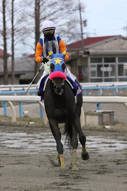 ヤマミダンス レース後(18/12/16・第54回 中日杯)