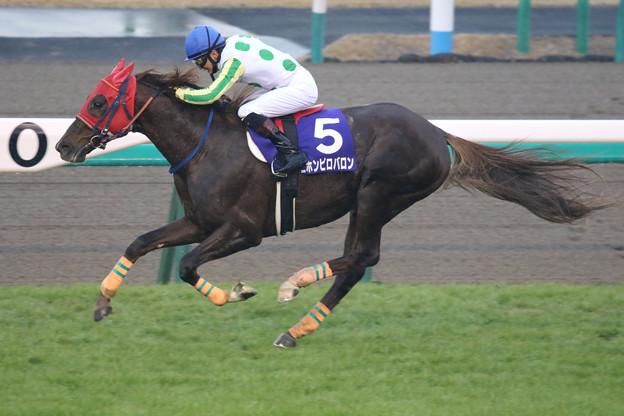ニホンピロバロン レース(18/12/22・第141回 中山大障害)