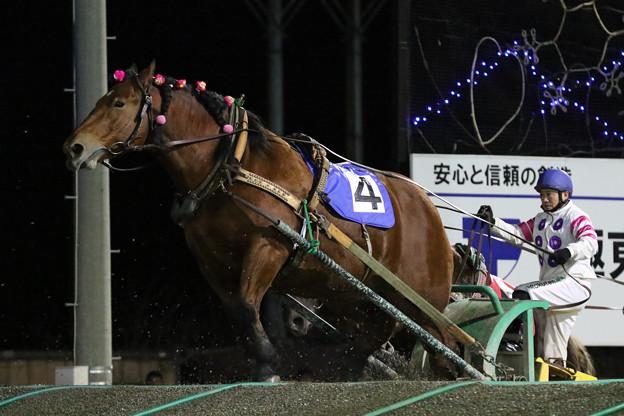 ヤマノホシ レース(18/10/28・11R)