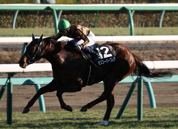 モズスーパーフレア レース_1(19/01/05・カーバンクルステークス)