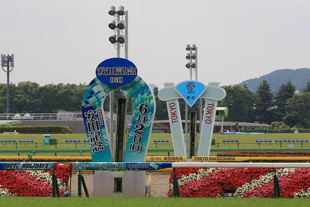 東京競馬場 ゴール板(19/06/01)