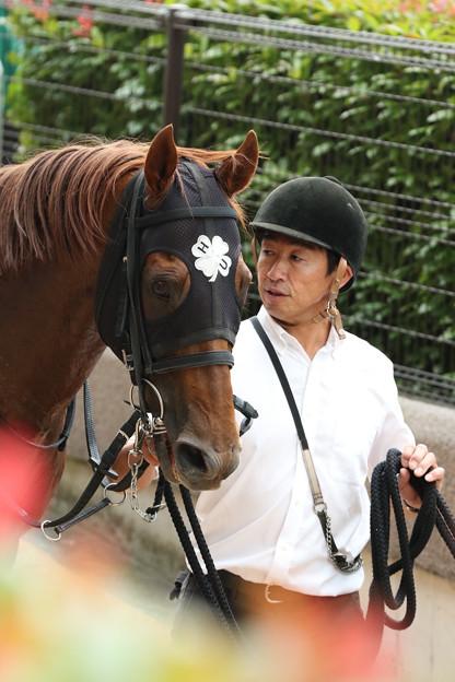 ショウナンライズ(19/06/22・ウッドパイン競馬場賞パラダイスステークス)