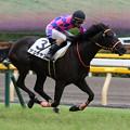 Photos: サナチャン レース(19/06/23・新馬戦)