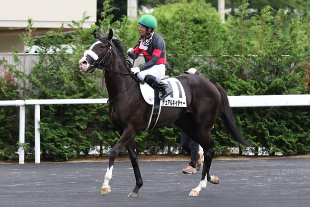 デュアルネイチャー レース後(19/07/06・新馬戦)